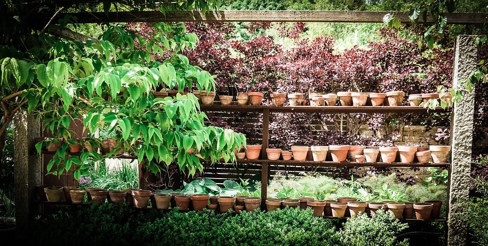 gardening-shelf-for-pots