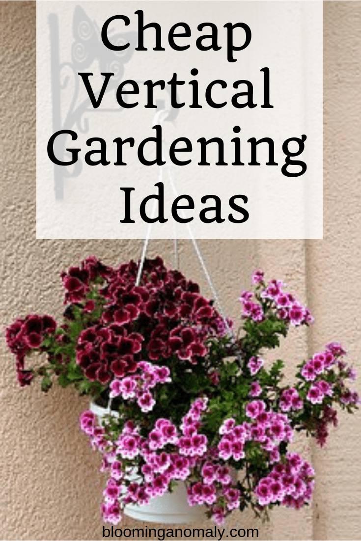 cheap vertical gardening ideas