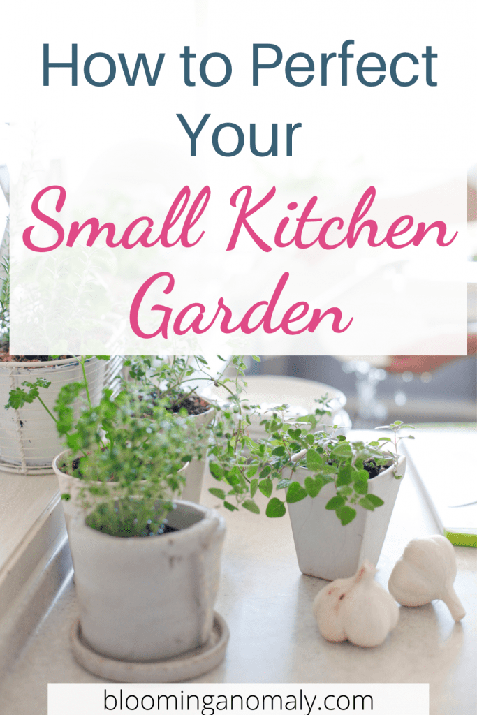 how to perfect your small kitchen garden