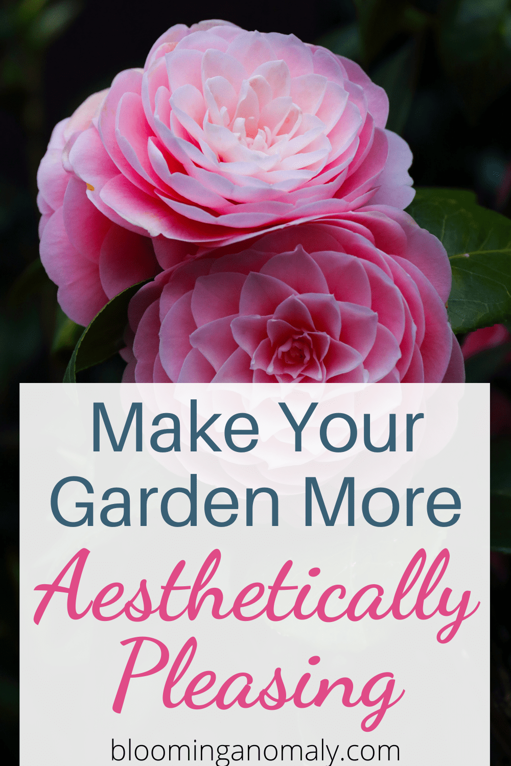 make your garden more aesthetically pleasing on a budget