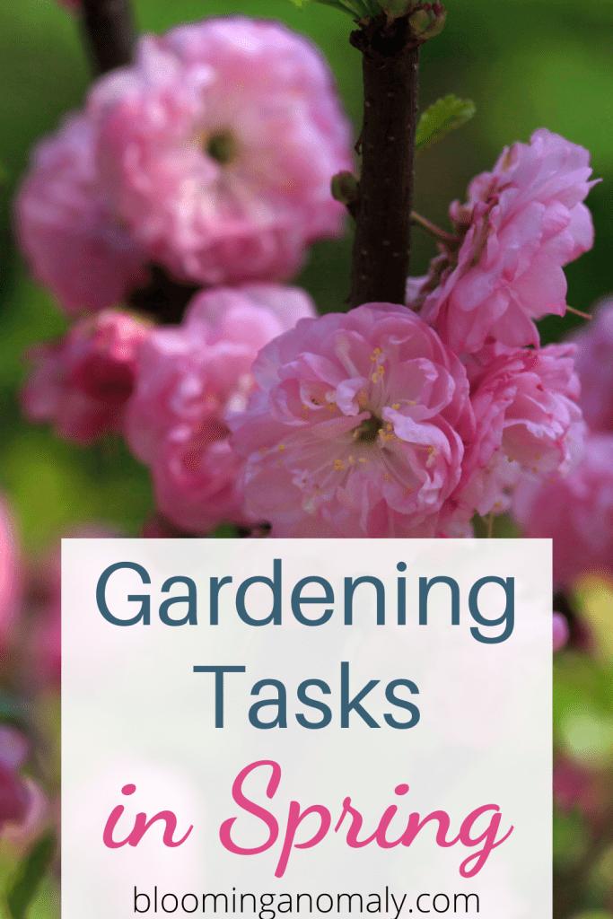 Gardening Tasks in Spring