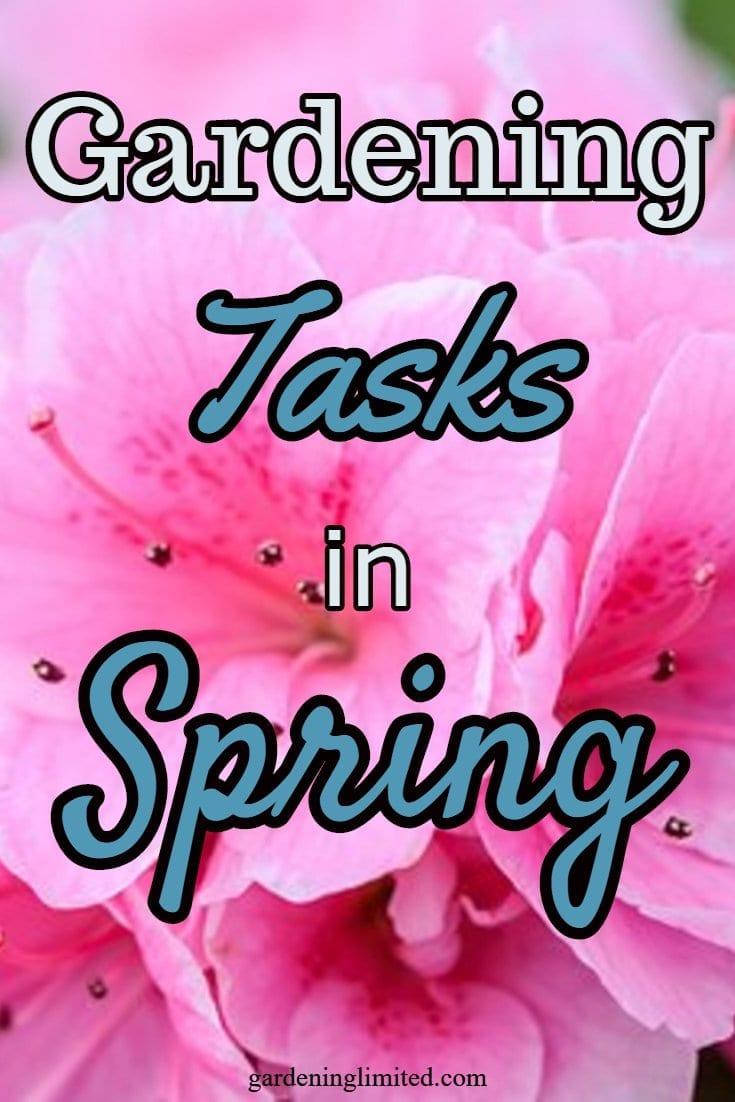 gardening tasks in spring, gardening, spring