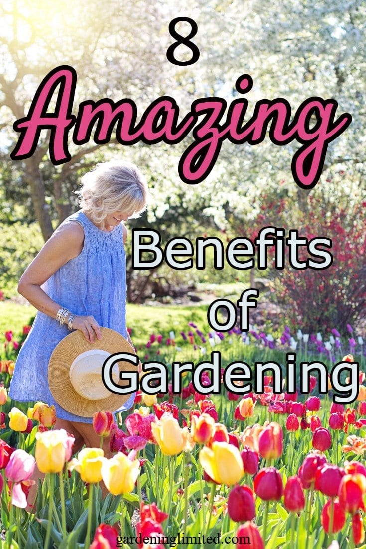 8 amazing benefits of gardening, benefits of gardening, gardening