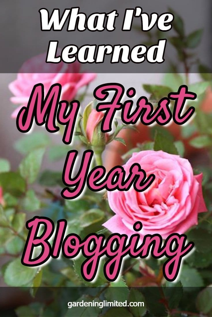 my first year blogging, blogging, how to blog