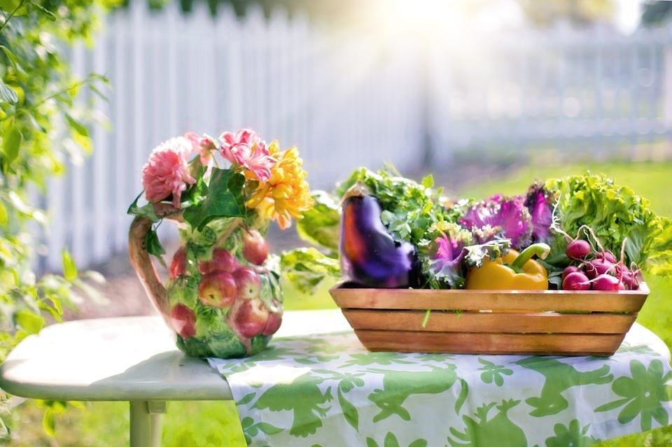 vegetables-and-flower-vase