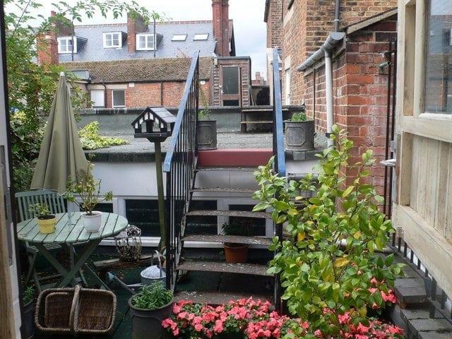 rooftop garden, plants, flowers, terrace garden, container garden, urban garden