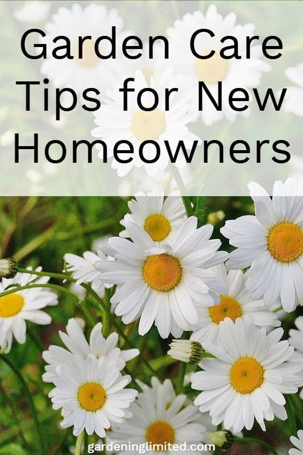 Garden Care Tips For New Homeowners