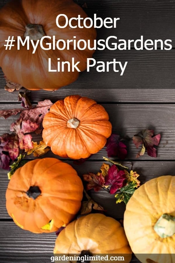 october #mygloriousgardens link party