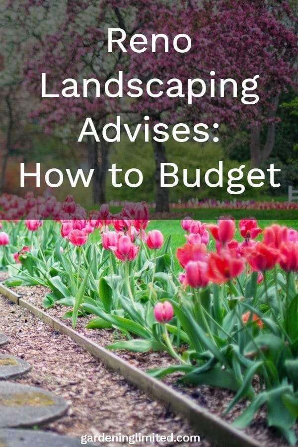 reno landscaping advises how to budget, gardening, landscaping flowers, tulips