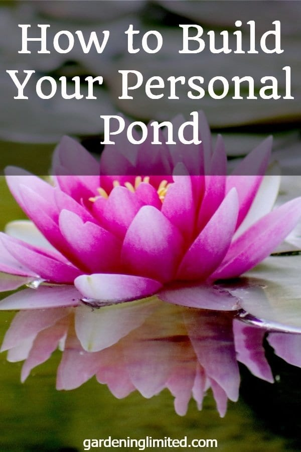 how to build your personal pond, how to, personal pond, garden pond