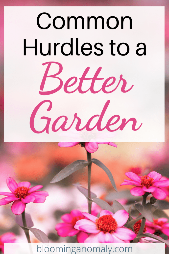 common hurdles to a better garden