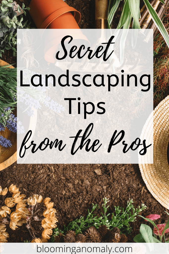 secret landscaping tips from the pros