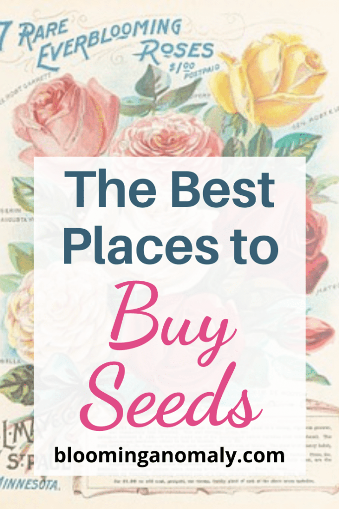 best places to buy seeds