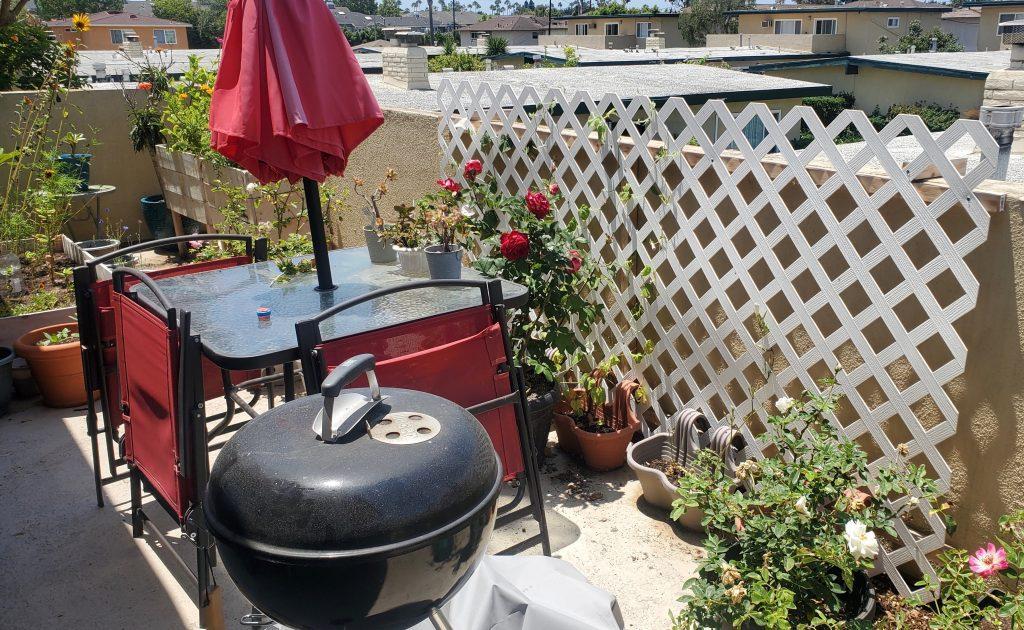 my_patio_roses