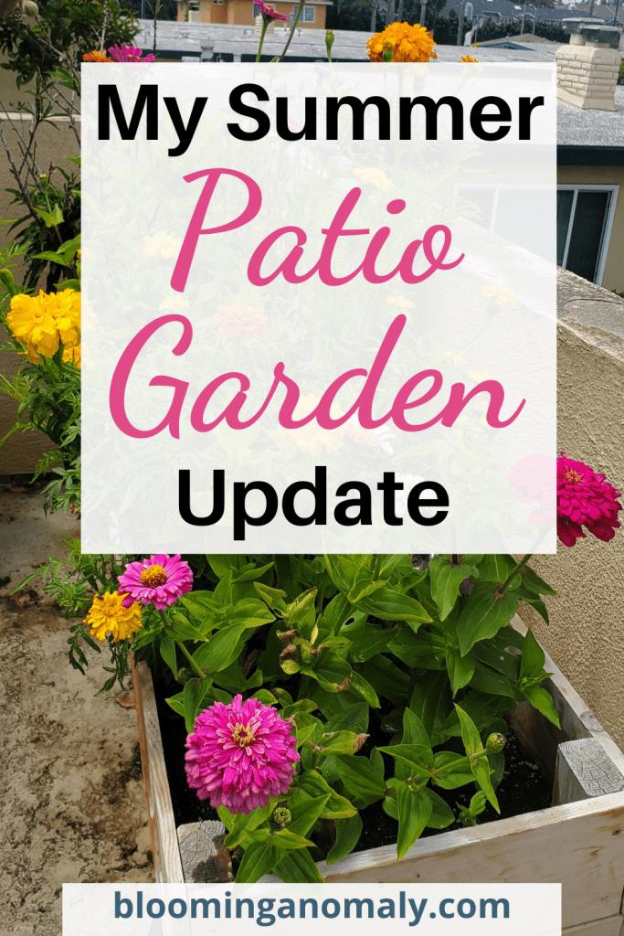 summer_patio_garden_update
