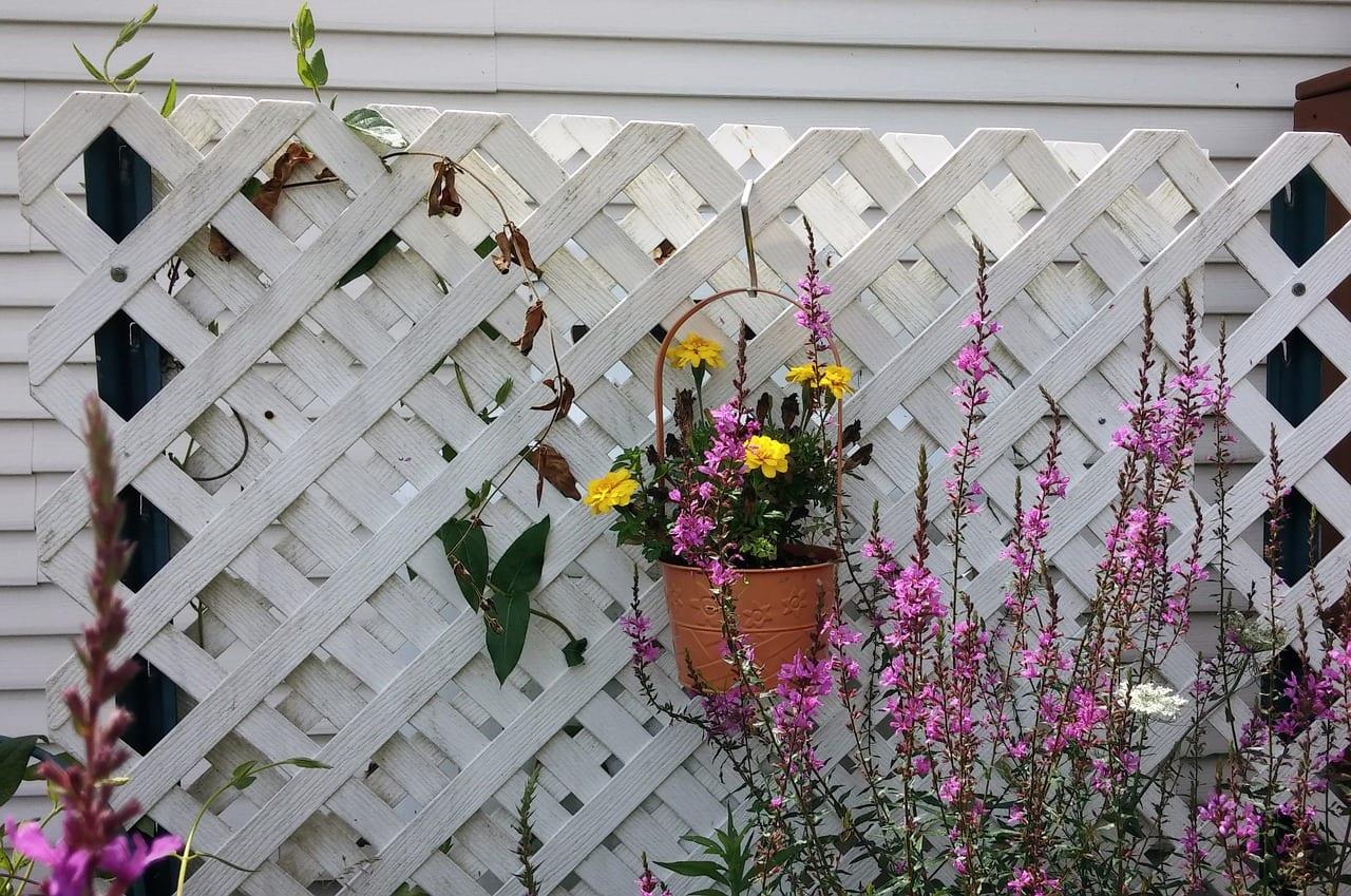 trellis_fence